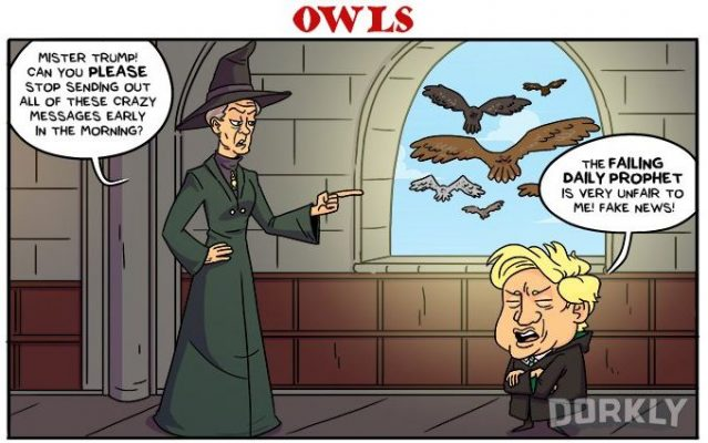 President Trump Illustrated As Harry Potter