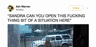 25 Of The Funniest Animal Tweets Of 2017