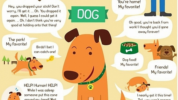 What Would Your Cat Or Dog Say If They Could Talk