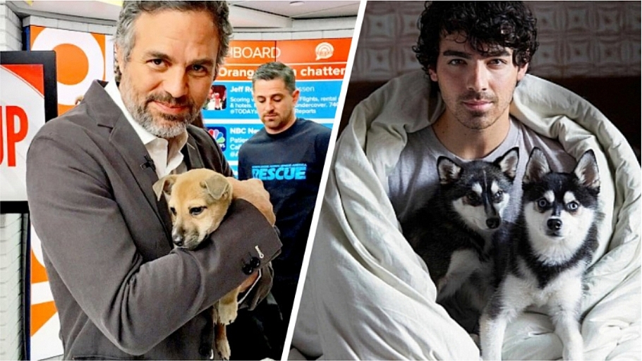 Celebrities Share Photos Of Their Adorable Puppies On National Puppy Day