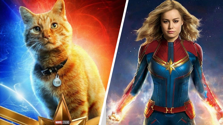 Who Would Have Thought Goose The Cat Is The Actual Breakout Star Of Captain Marvel