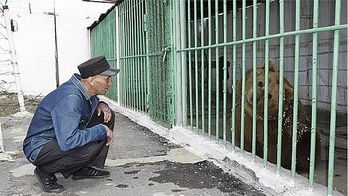 A Bear Has Been Sentenced To Life In A Human Prison After Two Attacks On People