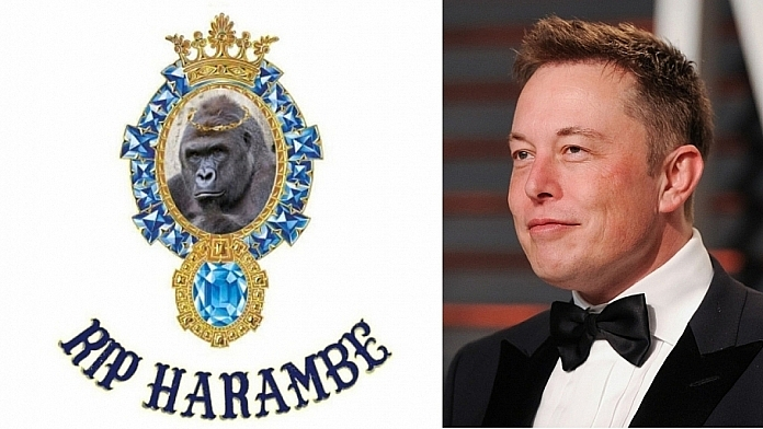 Elon Musk Takes Everyone By Surprise By Dropping New Rap Single 'RIP Harambe'