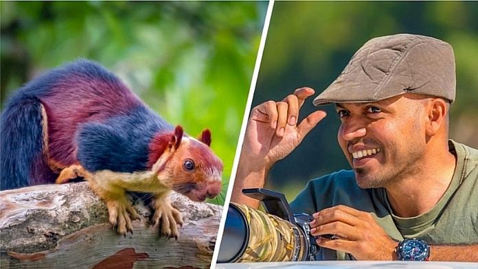 Photographer Captures Amazing Pictures Of Giant Multi Coloured Squirrel