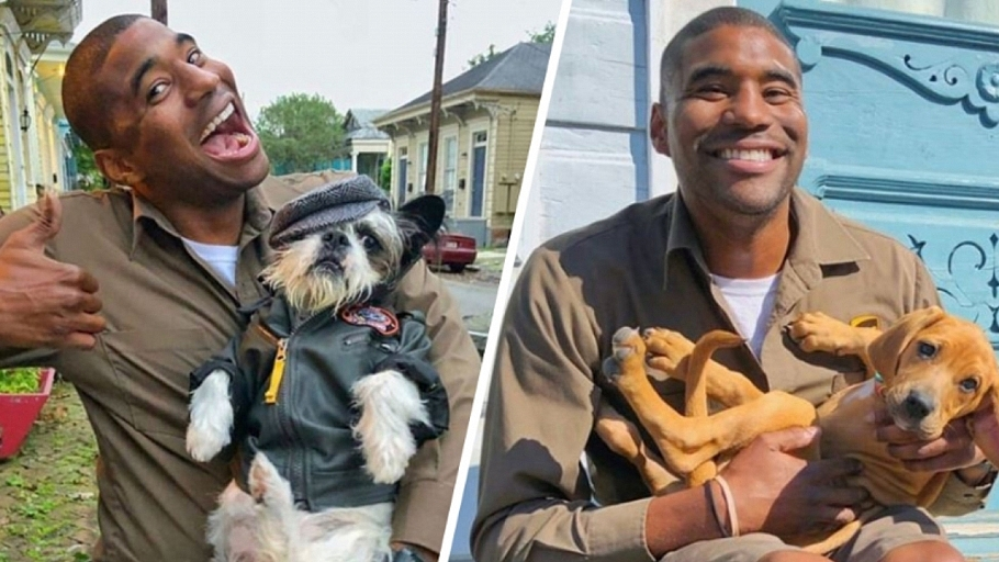 UPS Driver Instagrams Photos Of Adorable Dogs He Meets On His Delivery Runs